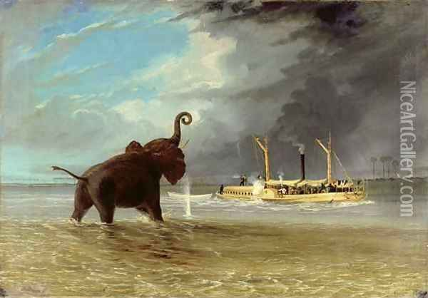 The 'Ma Roberts' and an Elephant in the Shallows, Lower Zambezi 1859 Oil Painting - Thomas Baines