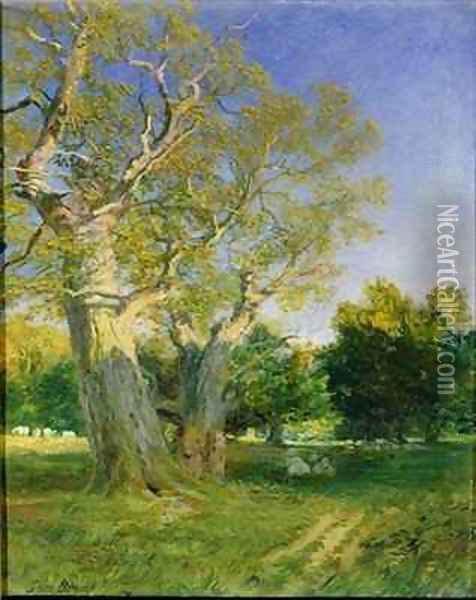 Summer Evening, Cadzow Oil Painting - Samuel Bough