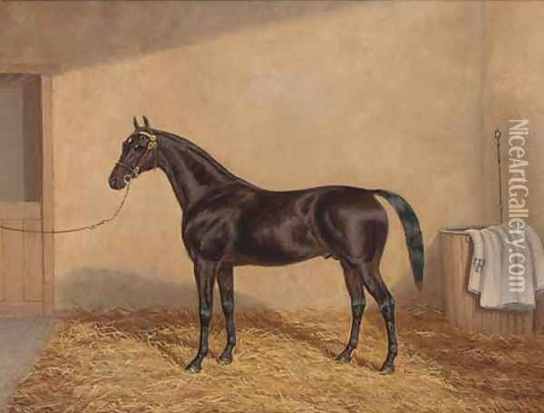 A bay racehorse in a stable Oil Painting - A. Clark