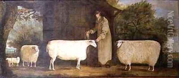 A Shepherd with his Flock Oil Painting - J.D. Curtis