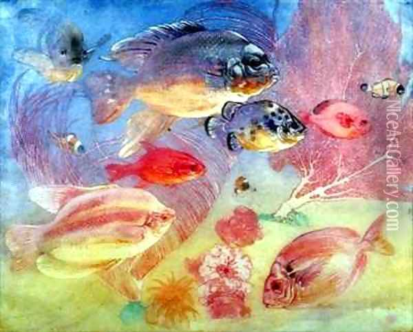 Tropical Fish Oil Painting - Charles Maurice Detmold