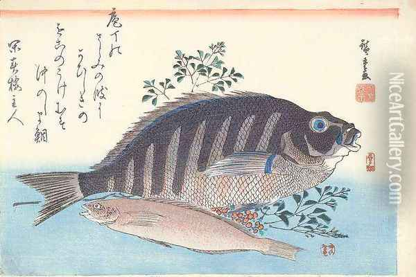 Shimadai and Ainame from the series The Large Fish Utagawa School Oil Painting - Utagawa or Ando Hiroshige