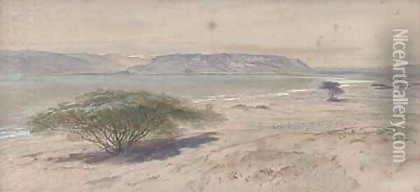 On the shores of the Mediterranean Oil Painting - Edward Lear