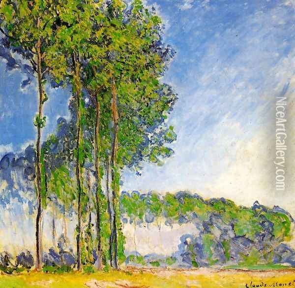 Poplars View From The Marsh Oil Painting - Claude Oscar Monet