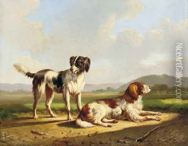 Two Hunting Dogs In A Summer Landscape Oil Painting - Albertus Verhoesen