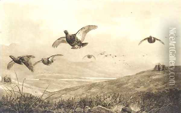 On the grouse moor Oil Painting - Archibald Thorburn