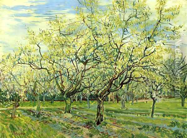Orchard with Blossoming Plum Trees Oil Painting - Vincent Van Gogh