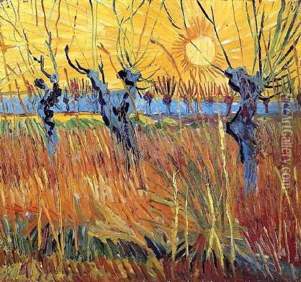 Pollard Willow with Setting Sun Oil Painting - Vincent Van Gogh