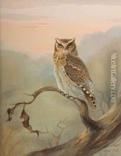 Great Horned Owl Oil Painting - Rena Fennessy