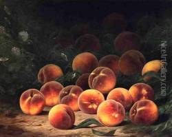 Bounty of Peaches