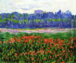 Fields of Poppies Oil Painting