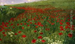 The Poppy Field, 1896 Oil Painting