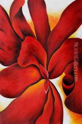 Red Cannas 1